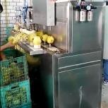 Машина для яблоко чистки и удаления сердцевины 400 кг/час, Сочи