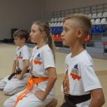 Карате спорт занятия для детей Ростов Западный, Сочи